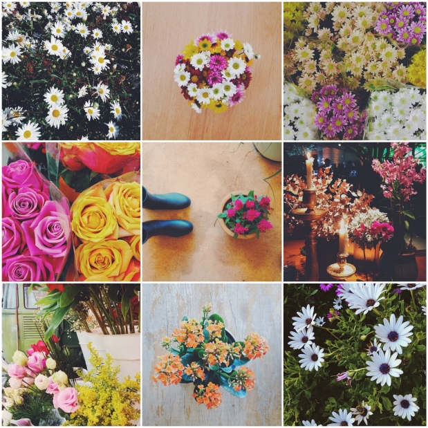 flores carol